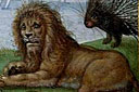Le lion Lion09