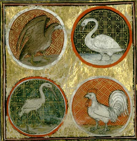 Bathélémy l'Anglais. Livre des propriétés des choses. Reims, Bibliothèque municipale, ms 993, fol 148v.