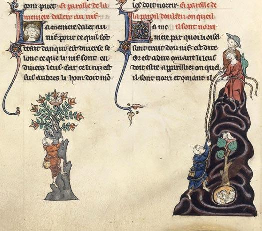 Le Livre de chasse de Gaston Fébus Fr_12400_095v