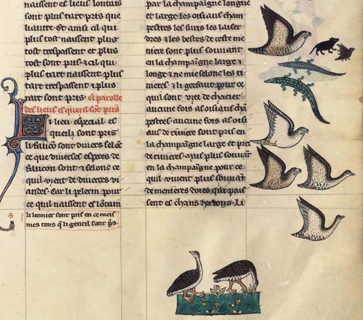 Le Livre de chasse de Gaston Fébus Fr_12400_112