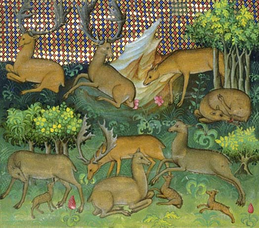Le Livre de chasse de Gaston Fébus Phe_chap3_2