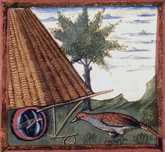 Enluminures: Les aliments au Moyen Âge 0-2