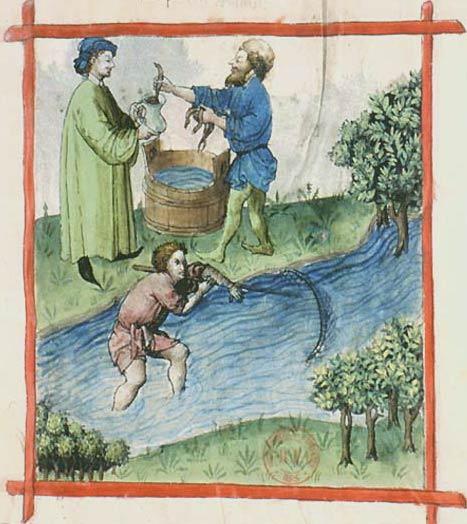Enluminures: Les aliments au Moyen Âge 0-4