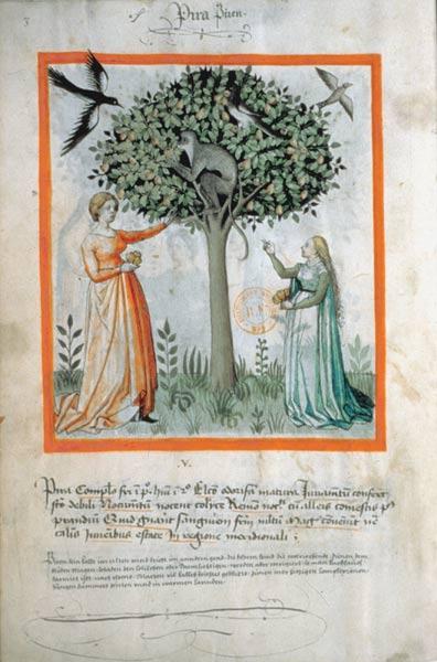 Enluminures: Les aliments au Moyen Âge 0-6