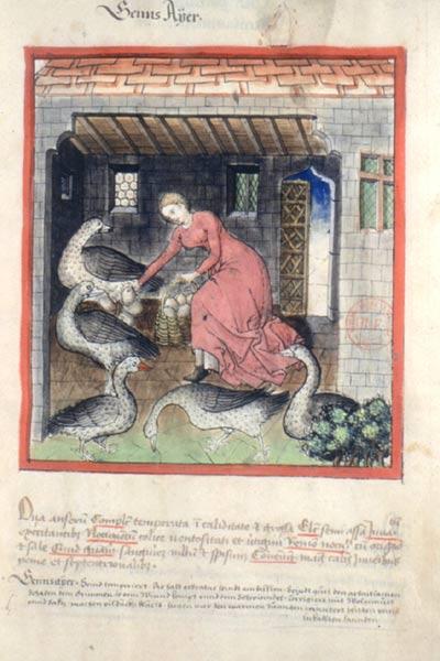 Enluminures: Les aliments au Moyen Âge 0-9