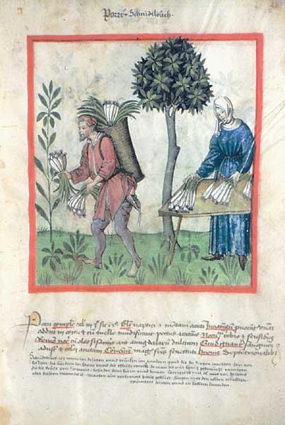 Enluminures: Les aliments au Moyen Âge 1-7
