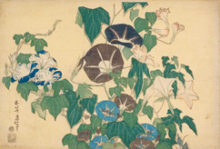 http://expositions.bnf.fr/japonaises/images/1/098a.jpg